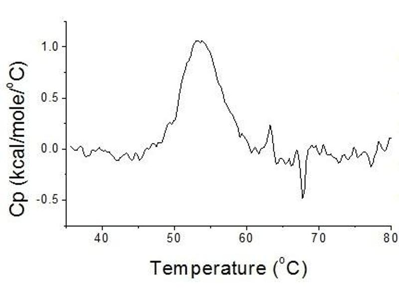 protein thermal stability analysis A thermal shift assay quantifies the change in thermal denaturation temperature of a protein under varying conditions the differing conditions that can be examined are very diverse, eg ph, salts, additives, drugs, drug leads, oxidation/reduction, or mutations.