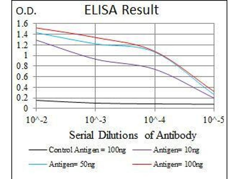 ELISA image for anti-NCK Adaptor Protein 1 (NCK1) antibody (ABIN969545)