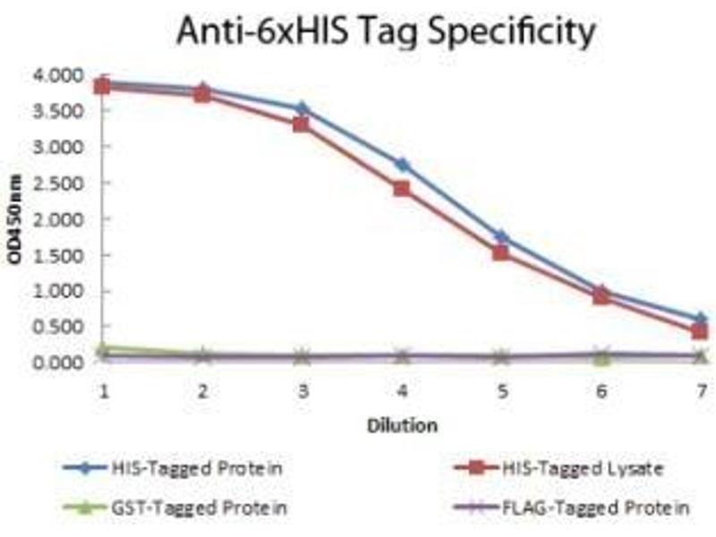ELISA image for anti-His Tag antibody (Biotin) (ABIN4276995)