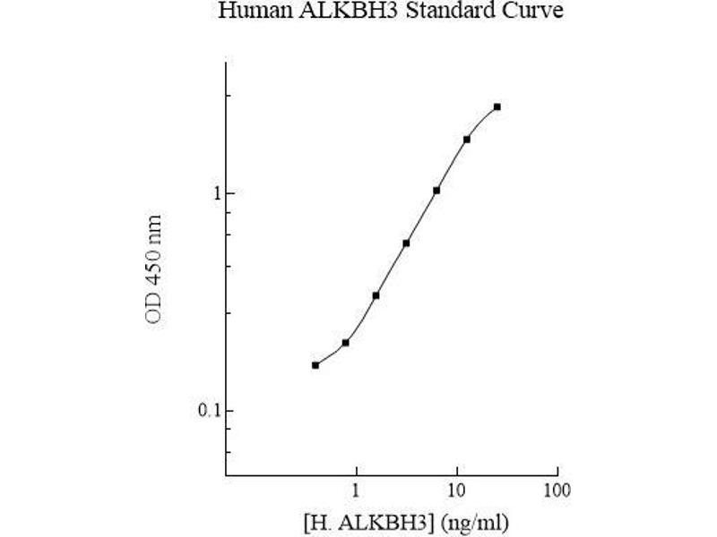 AlkB, Alkylation Repair Homolog 3 (E. Coli) (ALKBH3) ELISA Kit
