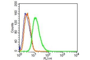 Flow Cytometry (FACS) image for anti-Synaptopodin (SYNPO) (AA 600-645) antibody (FITC) (ABIN701867)