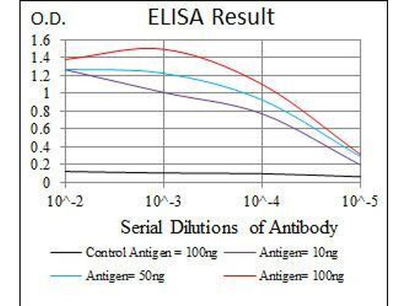 ELISA image for anti-Sonic Hedgehog (SHH) (AA 26-161) antibody (ABIN969567)