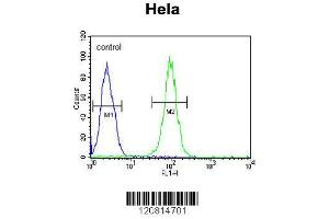 Flow Cytometry (FACS) image for anti-GRP78 antibody (Heat Shock 70kDa Protein 5 (Glucose-Regulated Protein, 78kDa)) (AA 541-568) (ABIN651231)