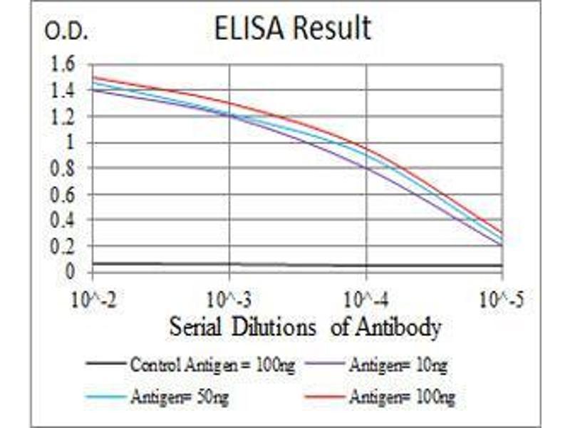 ELISA image for anti-Tubulin, beta 1 (TUBB1) (AA 33-166) antibody (ABIN4881117)