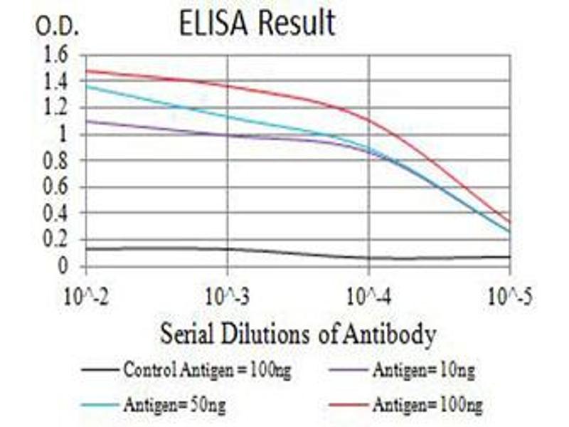 ELISA image for anti-Tumor Necrosis Factor (Ligand) Superfamily, Member 11 (TNFSF11) (AA 74-308) antibody (ABIN5611143)