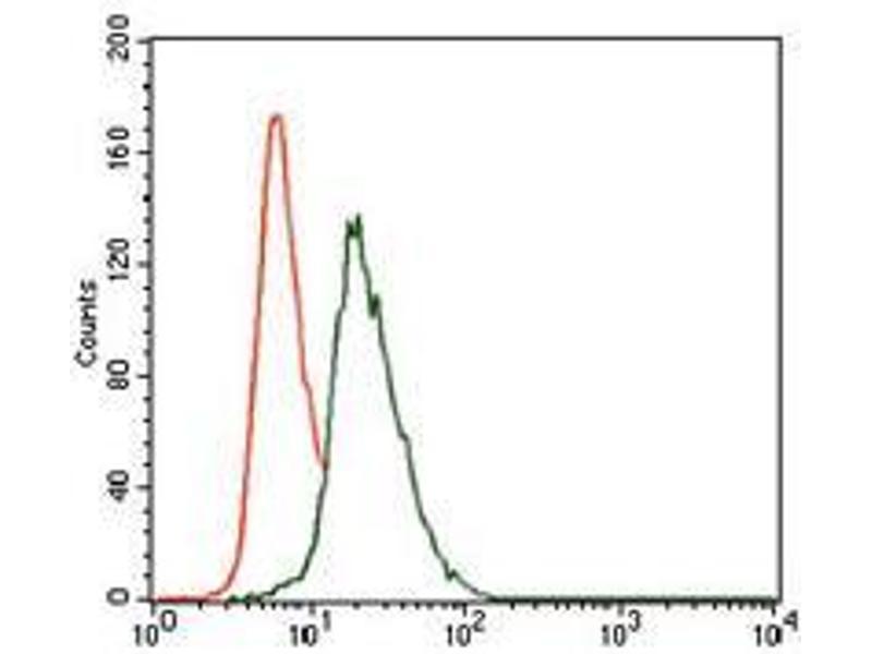 Flow Cytometry (FACS) image for anti-Vav 1 Oncogene (VAV1) (AA 121-324) antibody (ABIN969581)