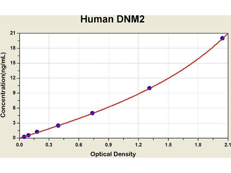 Dynamin 2 (DNM2) ELISA Kit