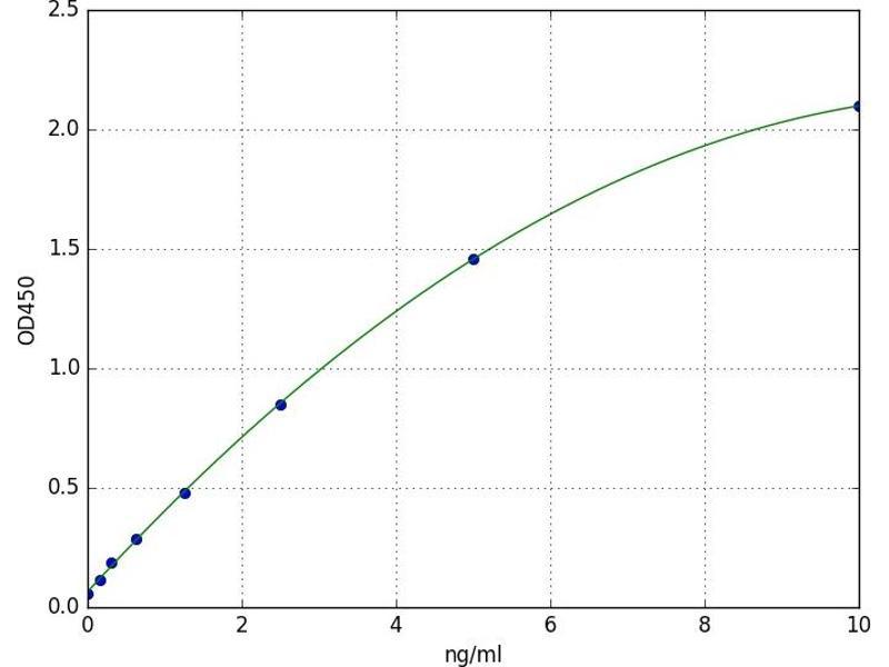 ATPase, Cu++ Transporting, alpha Polypeptide (ATP7A) ELISA Kit