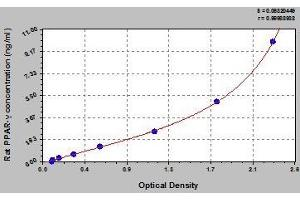Image no. 1 for Peroxisome Proliferator-Activated Receptor gamma (PPARG) ELISA Kit (ABIN368258)