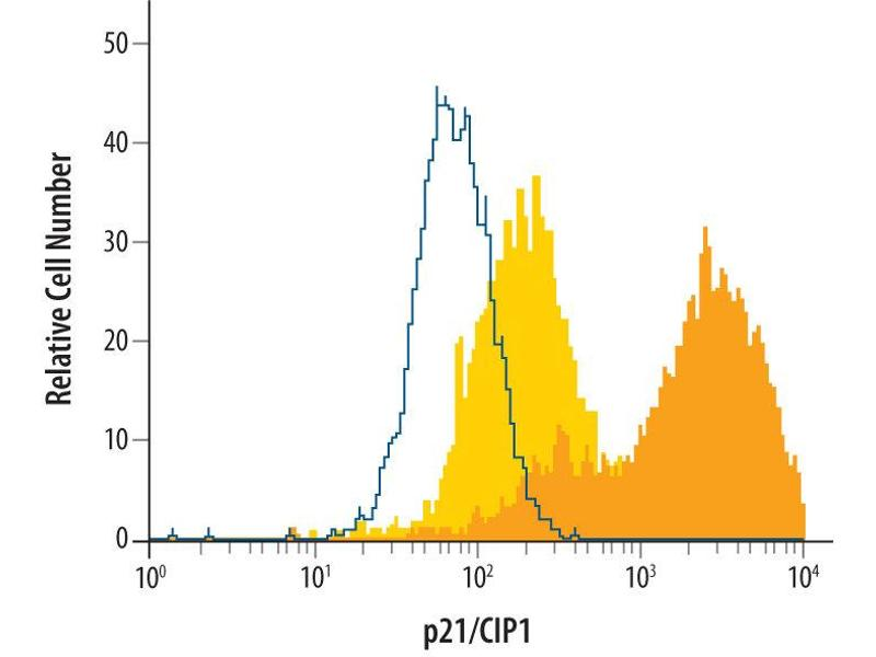 Flow Cytometry (FACS) image for anti-CDKN1A antibody (Cyclin-Dependent Kinase Inhibitor 1A (p21, Cip1)) (AA 2-164) (ABIN4899426)