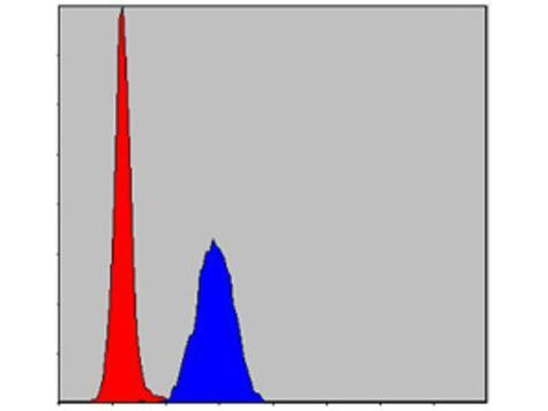 Flow Cytometry (FACS) image for anti-Mitogen-Activated Protein Kinase 3 (MAPK3) antibody (ABIN1844633)