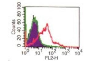 Flow Cytometry (FACS) image for anti-CD4 antibody (CD4 Molecule) (ABIN4292796)