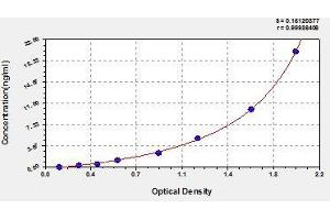 Image no. 1 for Ngal/Mmp-9 Complex ELISA Kit (ABIN1690717)