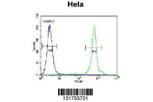 Flow Cytometry (FACS) image for anti-Ubiquinol-Cytochrome C Reductase, Rieske Iron-Sulfur Polypeptide 1 (UQCRFS1) (AA 181-209), (C-Term) antibody (ABIN655606)