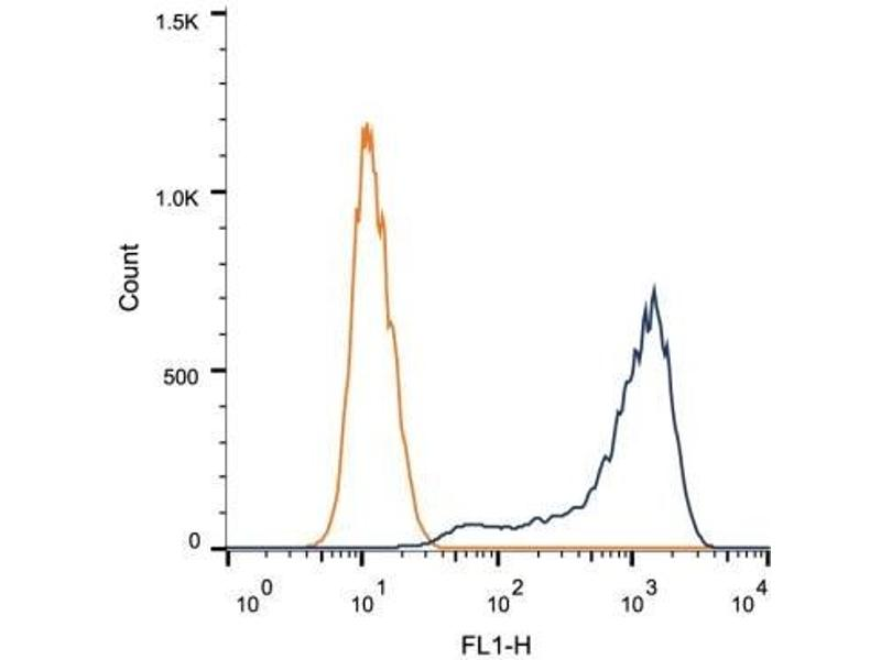 Flow Cytometry (FACS) image for anti-HSPB1 antibody (Heat Shock 27kDa Protein 1) (ABIN4320008)