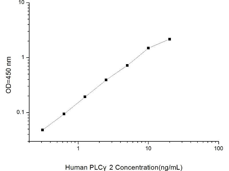 Phospholipase C gamma 2 (PLCG2) ELISA Kit (2)
