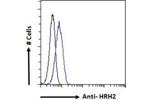Image no. 3 for anti-Histamine Receptor H2 (HRH2) (C-Term) antibody (ABIN185463)