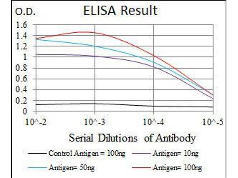 ELISA image for anti-Fas (TNF Receptor Superfamily, Member 6) (FAS) antibody (ABIN4880717)