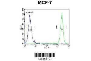 Flow Cytometry (FACS) image for anti-SEL1L antibody (Sel-1 Suppressor of Lin-12-Like (C. Elegans)) (AA 156-182) (ABIN654642)