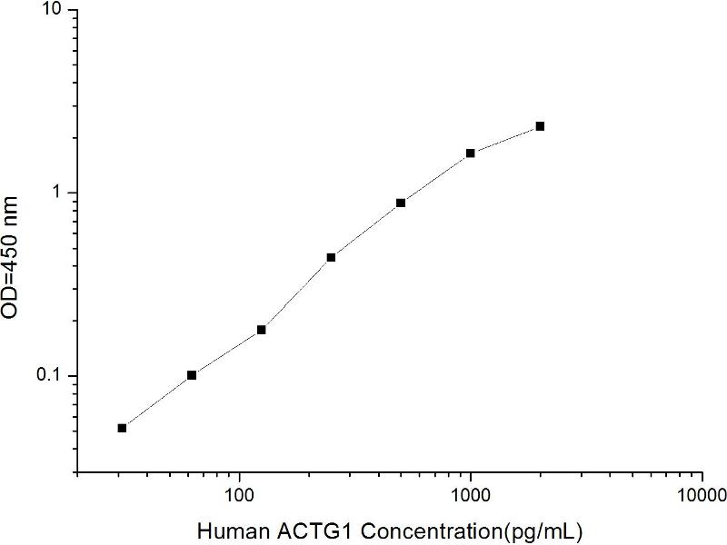 Actin, gamma 1 (ACTG1) ELISA Kit (2)