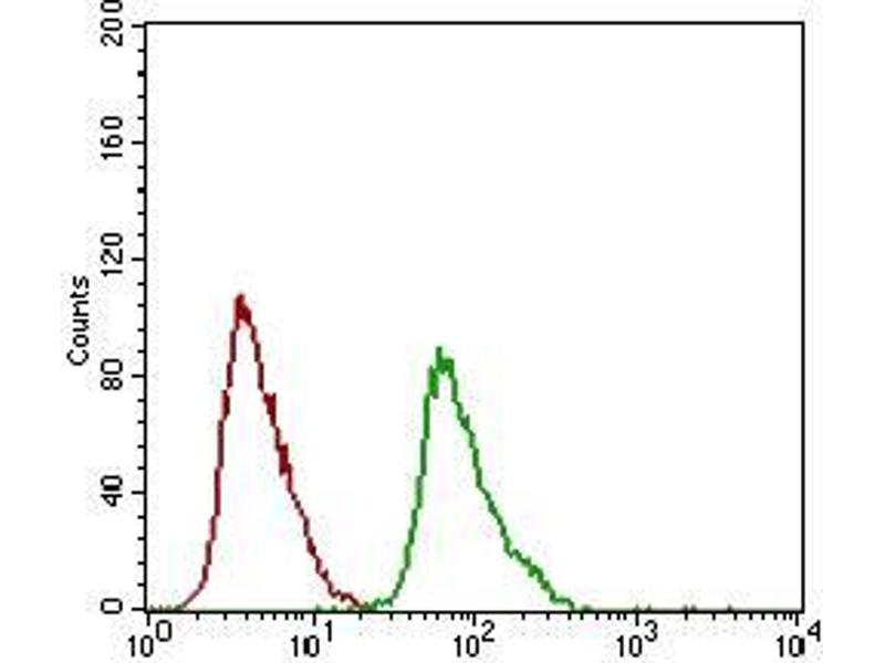 Image no. 6 for anti-Dynamin 1-Like (DNM1L) (AA 69-213) antibody (ABIN1724907)