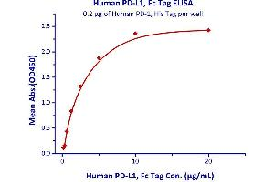 Image no. 2 for Programmed Cell Death 1 (PDCD1) (AA 25-167) (Active) protein (His tag) (ABIN2181605)