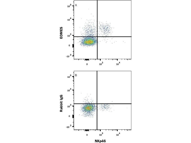 Flow Cytometry (FACS) image for anti-EOMES antibody (Eomesodermin) (AA 1-126) (PE) (ABIN4895246)