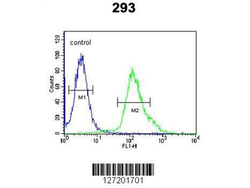 Flow Cytometry (FACS) image for anti-Fibroblast Growth Factor Binding Protein 3 (FGFBP3) (AA 181-210), (C-Term) antibody (ABIN651816)