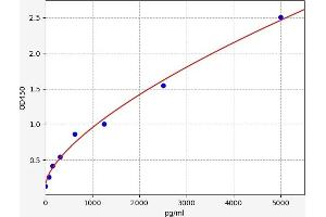 Image no. 1 for Teratocarcinoma-Derived Growth Factor 1 (TDGF1) ELISA Kit (ABIN6970587)