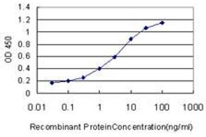Image no. 3 for anti-S100 Calcium Binding Protein A13 (S100A13) (AA 1-98) antibody (ABIN562786)