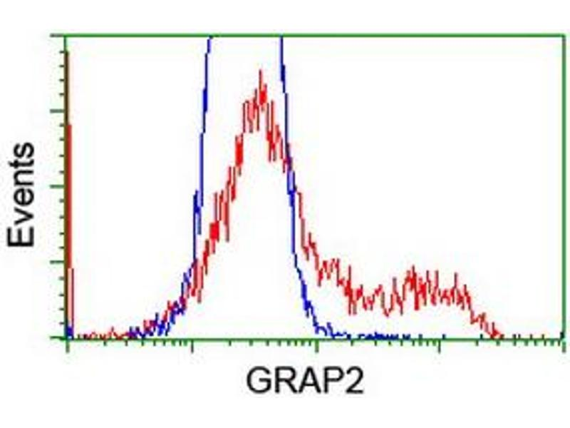 Flow Cytometry (FACS) image for anti-GRAP2 antibody (GRB2-Related Adaptor Protein 2) (ABIN2454589)