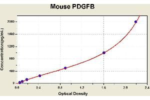 ELISA image for PDGFB ELISA Kit (Platelet-Derived Growth Factor beta Polypeptide) (ABIN1116560)