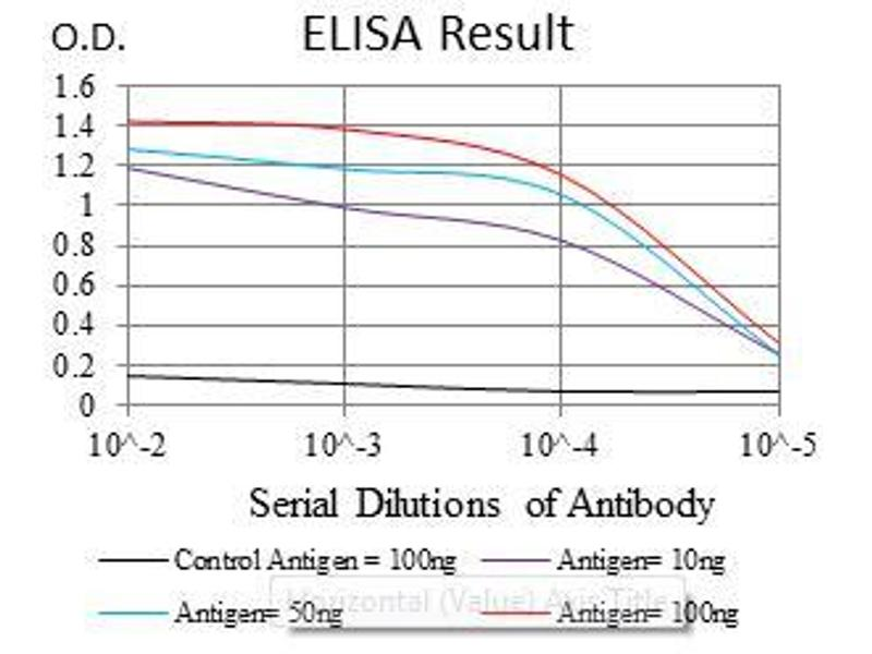 ELISA image for anti-Argininosuccinate Synthase 1 (ASS1) antibody (ABIN969502)