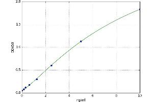 Image no. 1 for Cytochrome P450, Family 24, Subfamily A, Polypeptide 1 (CYP24A1) ELISA Kit (ABIN5523796)