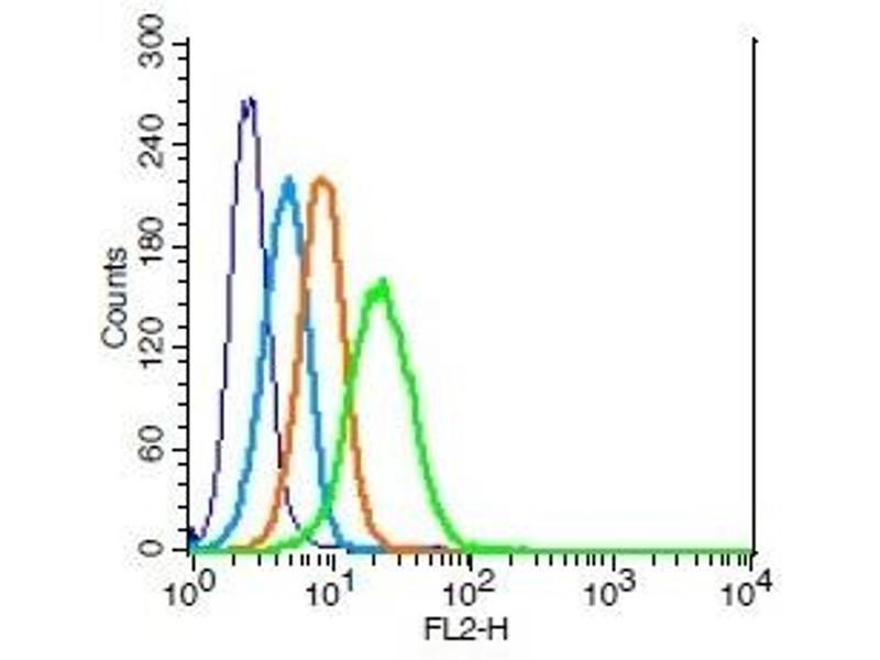Flow Cytometry (FACS) image for anti-Interleukin 3 Receptor, alpha (Low Affinity) (IL3RA) (AA 200-235) antibody (ABIN747818)