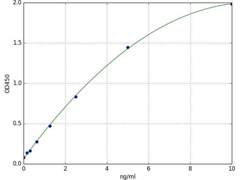 Caspase 10, Apoptosis-Related Cysteine Peptidase (CASP10) ELISA Kit