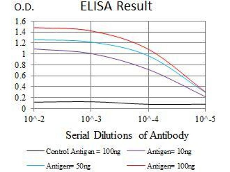 ELISA image for anti-Epidermal Growth Factor Receptor (EGFR) (AA 693-893), (Mutant) antibody (ABIN1724825)