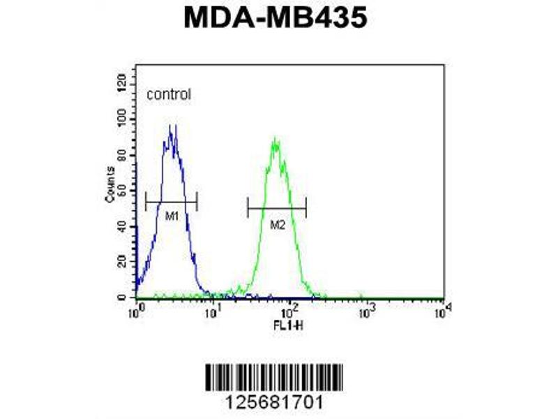 Flow Cytometry (FACS) image for anti-SMPDL3A antibody (Sphingomyelin phosphodiesterase, Acid-Like 3A) (AA 321-349) (ABIN651168)