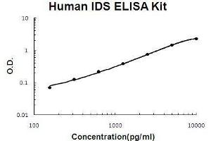 Image no. 1 for Iduronate 2-Sulfatase (IDS) ELISA Kit (ABIN3044712)