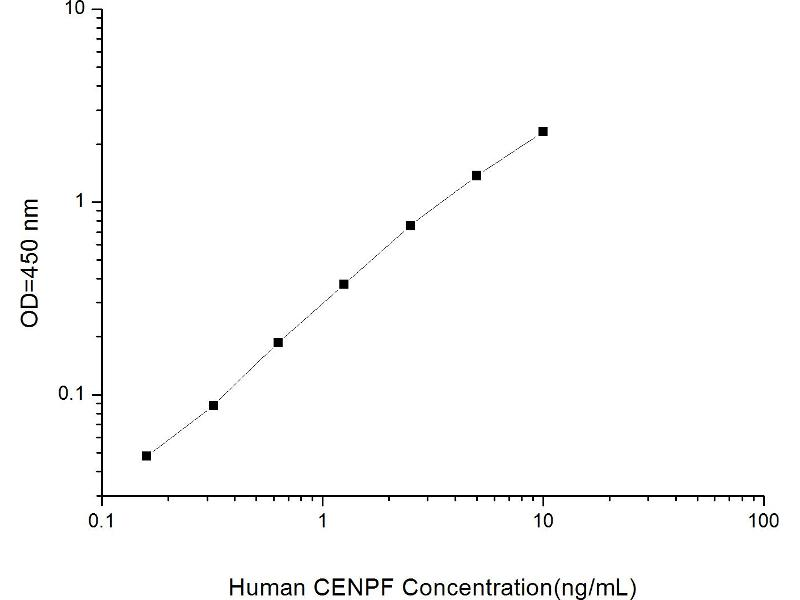 Centromere Protein F (CENPF) ELISA Kit (2)