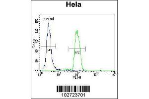 Flow Cytometry (FACS) image for anti-MAPK14 antibody (Mitogen-Activated Protein Kinase 14) (AA 295-324) (ABIN1882176)