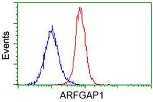 Flow Cytometry (FACS) image for anti-ARFGAP1 antibody (ADP-Ribosylation Factor GTPase Activating Protein 1) (ABIN2454308)
