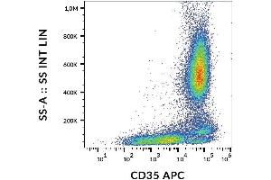 Image no. 1 for anti-Complement Component Receptor 1 (CD35) (CR1) antibody (APC) (ABIN6240822)