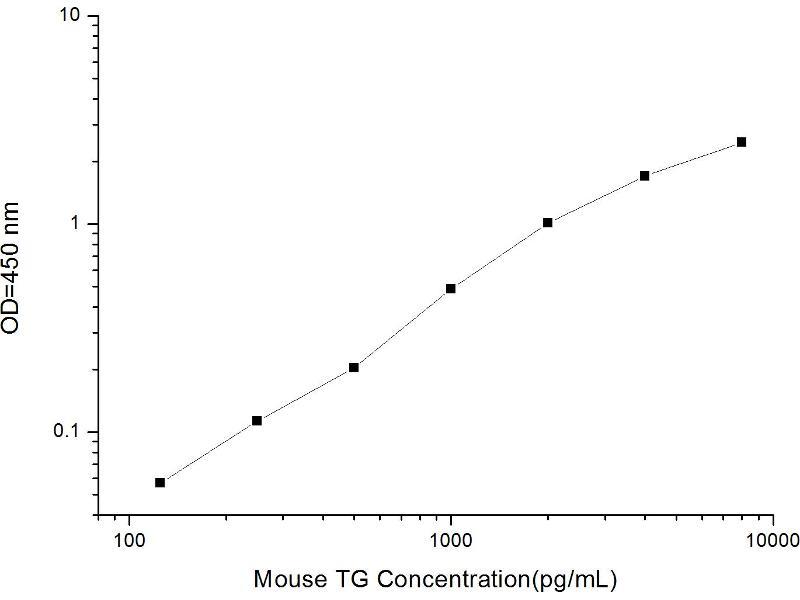 Thyroglobulin (TG) ELISA Kit (2)