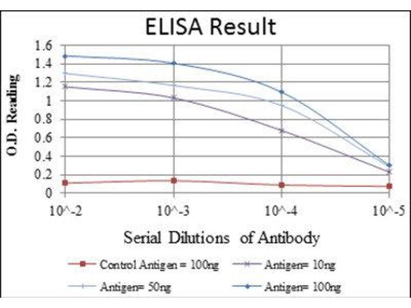 ELISA image for anti-FYN Oncogene Related To SRC, FGR, YES (FYN) antibody (ABIN1846351)