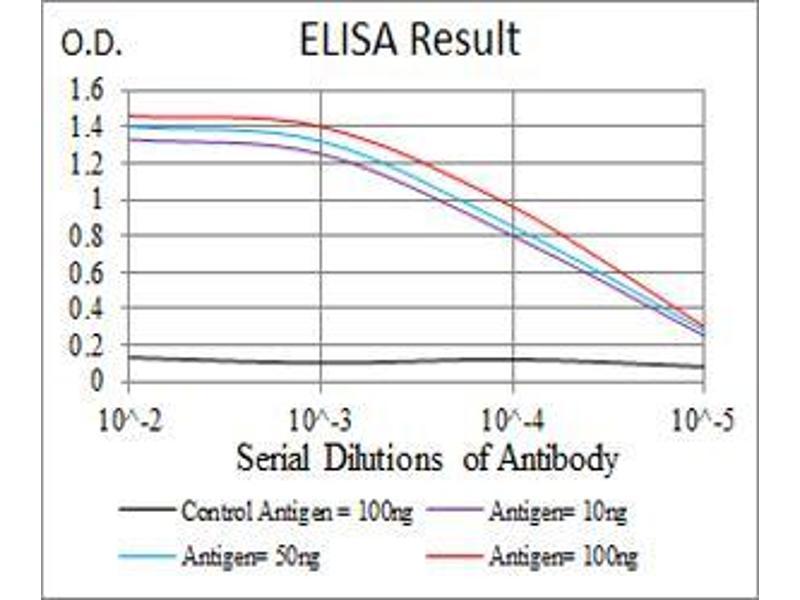ELISA image for anti-Janus Kinase 2 (JAK2) (AA 745-955) antibody (ABIN5542629)