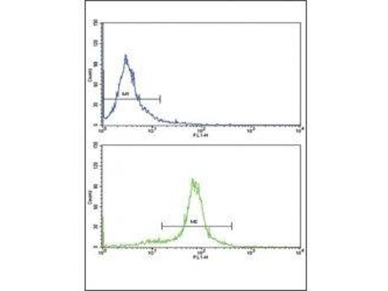 Flow Cytometry (FACS) image for anti-Paired Box 6 (PAX6) (AA 183-210) antibody (ABIN3032129)