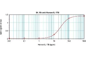 Image no. 2 for anti-Interleukin 17B (IL17B) antibody (Biotin) (ABIN181689)