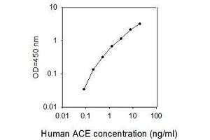 Image no. 1 for Angiotensin I Converting Enzyme 2 (ACE2) ELISA Kit (ABIN6952471)