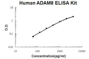 Image no. 1 for ADAM Metallopeptidase Domain 8 (ADAM8) ELISA Kit (ABIN2859283)